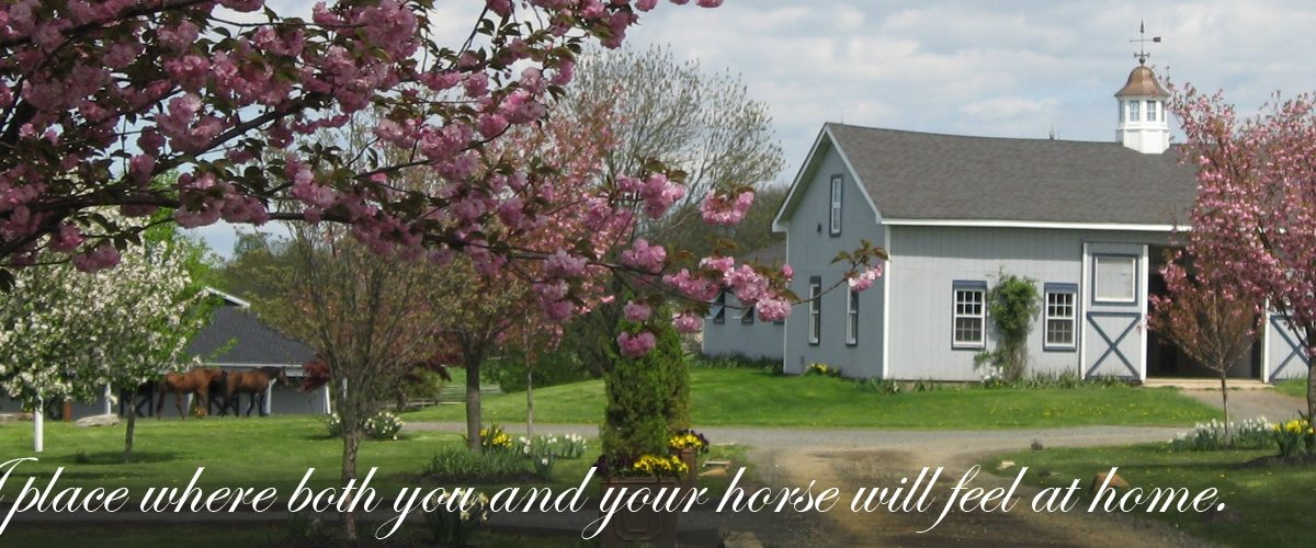 A place where both you and your horse will feel at home